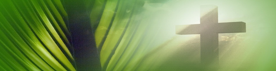 Palm-Sunday_banner